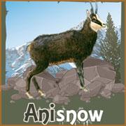 Anisnow