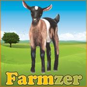 Farmzer